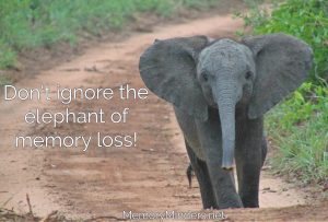 Elephant of memory loss